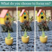 positive focus